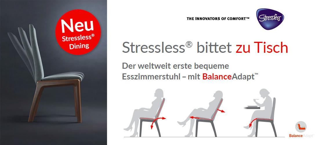 Stressless® Esszimmerstuhl - mit BalanceAdapt | Möbel Schulze