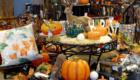 Herbstliche Dekoration kaufen - Mobile